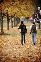 Studenten auf dem Weg zum Unterricht