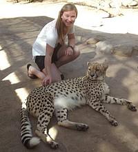 Austauschstudentin in Südafrika mit Gepard