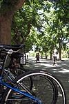 Fahrräder auf dem Campus dr UC Riverside