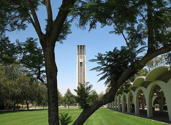 Der Campus der UC Riverside