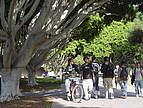Studenten der University of California, Santa Barbara