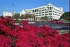 Blick auf das Hauptgebäude der California State University, San Marcos