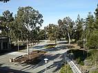 Blick auf dem Campus der CSU East Bay