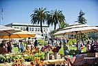 Wochenmarkt in Arcata