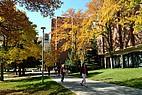Studenten auf dem Campus der Montana State University