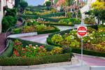 Blühende Lombard Street, San Francisco