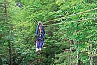 Tree Top Tour in West Virginia