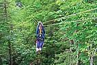 Tree Top Tour in West Virginia