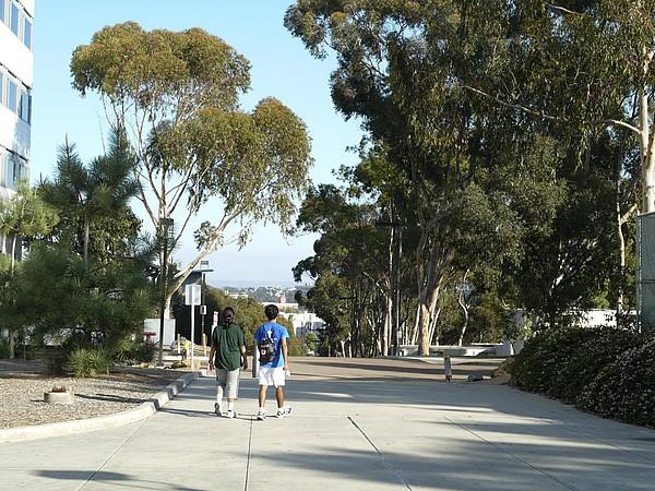 Auf dem Campus der University of California, San Diego